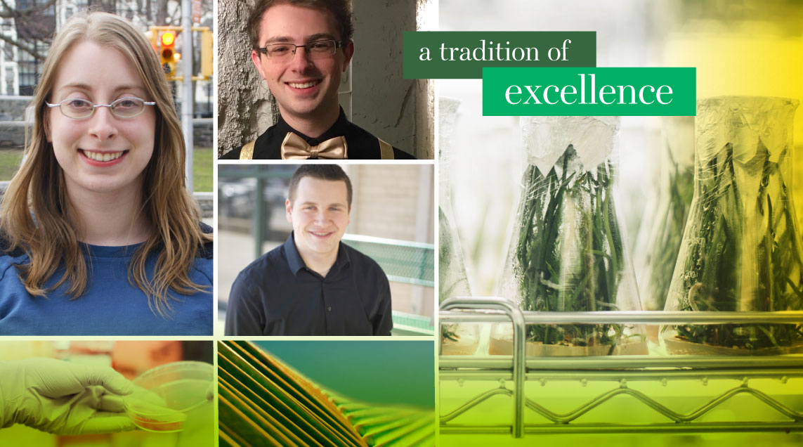 Collage featuring three student award winners.