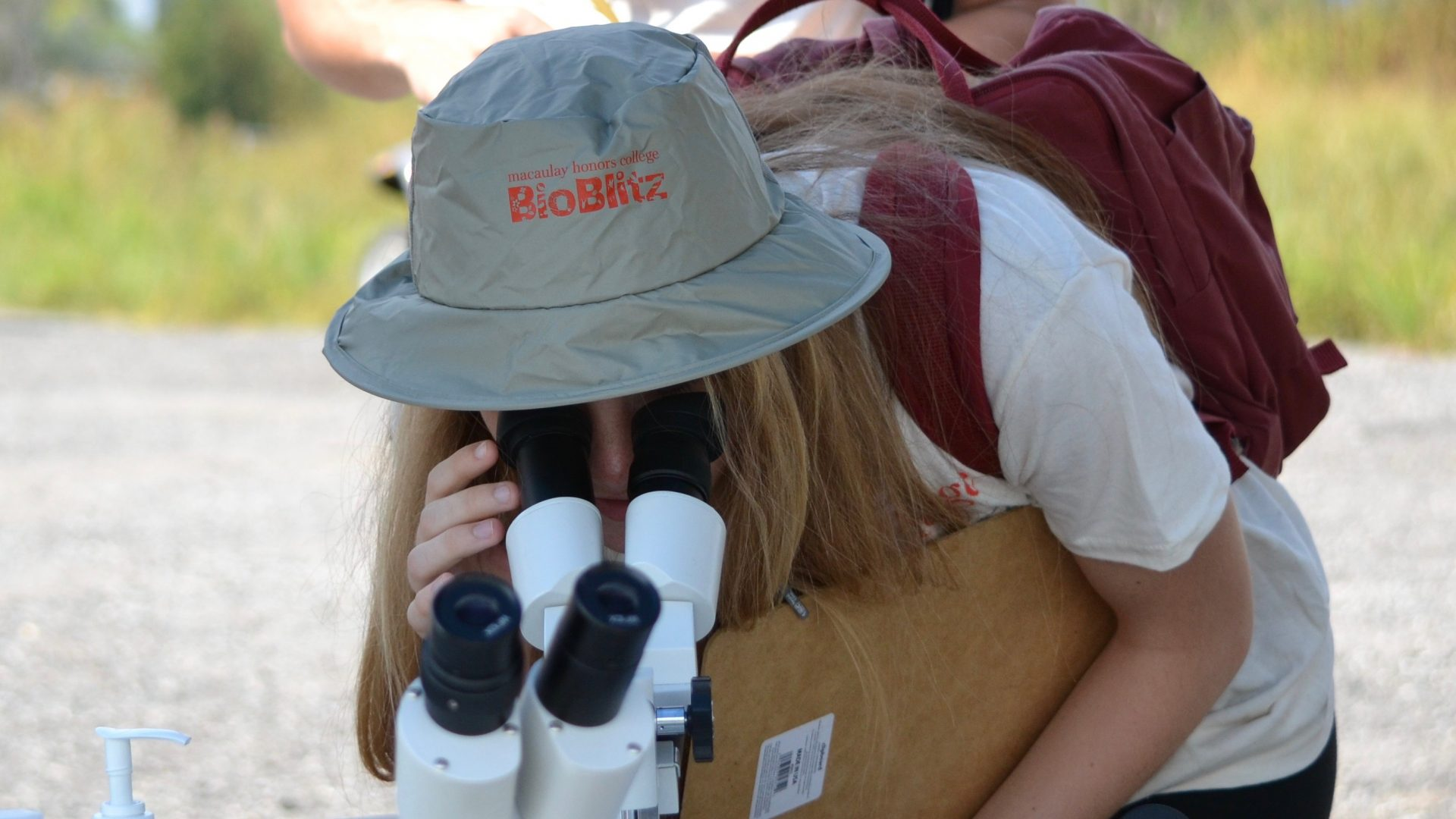 Student at Bioblitz looking at a microscope