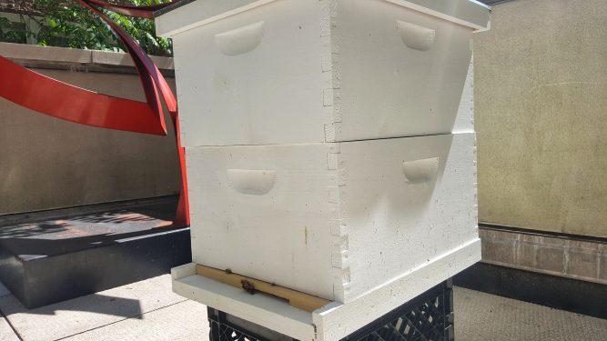 Macaulay Hive