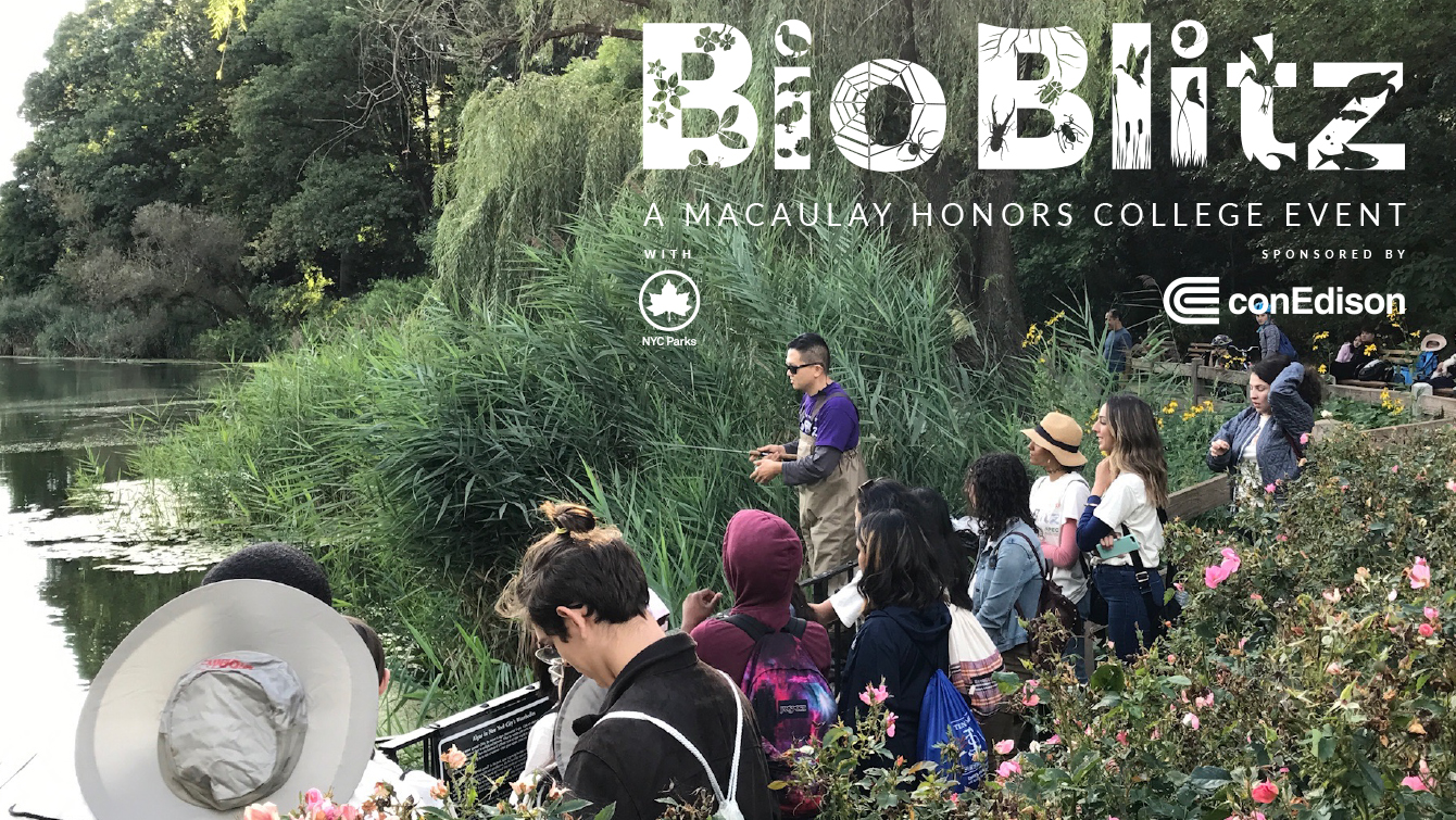 Bioblitz: A Macaulay Honors College Event sponsored by ConEdison