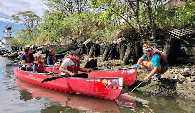 Macaulay BioBlitz 2019 at the Gowanus Canal
